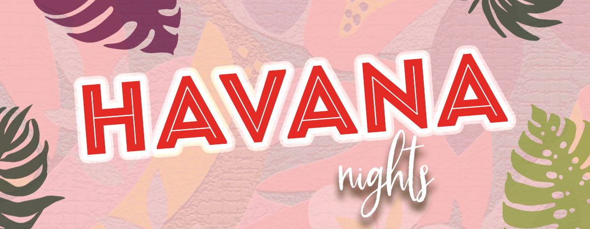 Havana Nights: Farmingdale PTC Fundraiser Auction